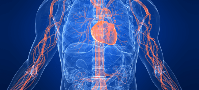 Common Male Medical Condition Linked to Vascular Disease
