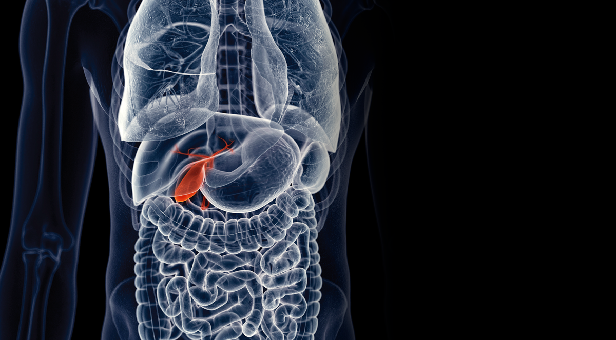 Interventions for Gallbladder Disease