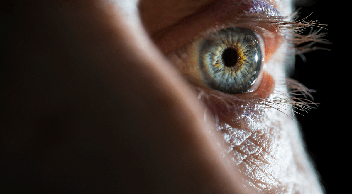 Digital Scan of the Eye Provides Accurate Picture of a Person's General Health
