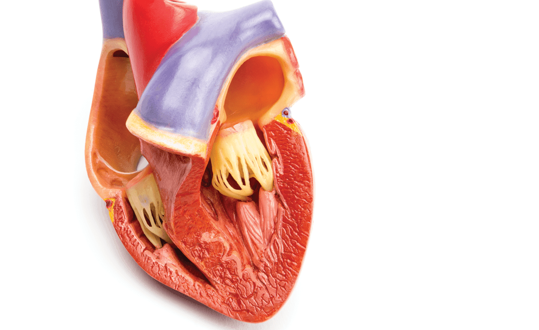 CME/CE: Key Concepts in Managing Complicated Pericarditis