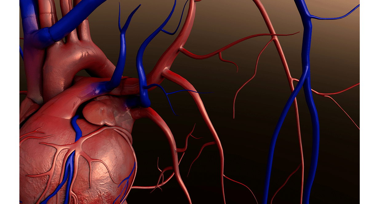Heart Attack Risk 17-Times More Likely Following Respiratory Infections