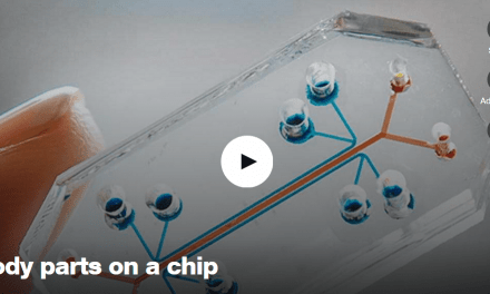 Body Parts on a Chip