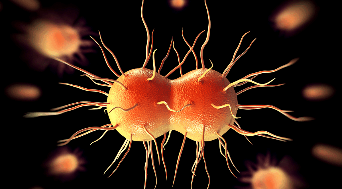 Lower Levels of Vaginal Tryptophan Associated With Natural Clearance of Chlamydia