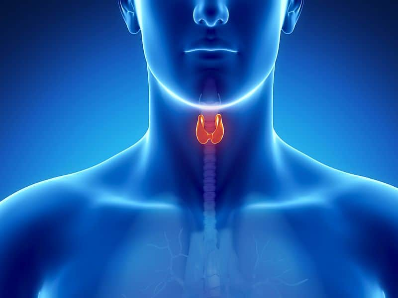 Low-Dose Radiation Safe for Low-Risk Thyroid Cancer