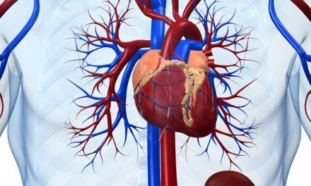 Elevated NT-proBNP Found to Up Cardiovascular Risk in T2DM