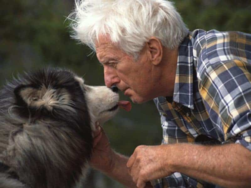 Dog Ownership May Lower Risk for Death After Major CV Event