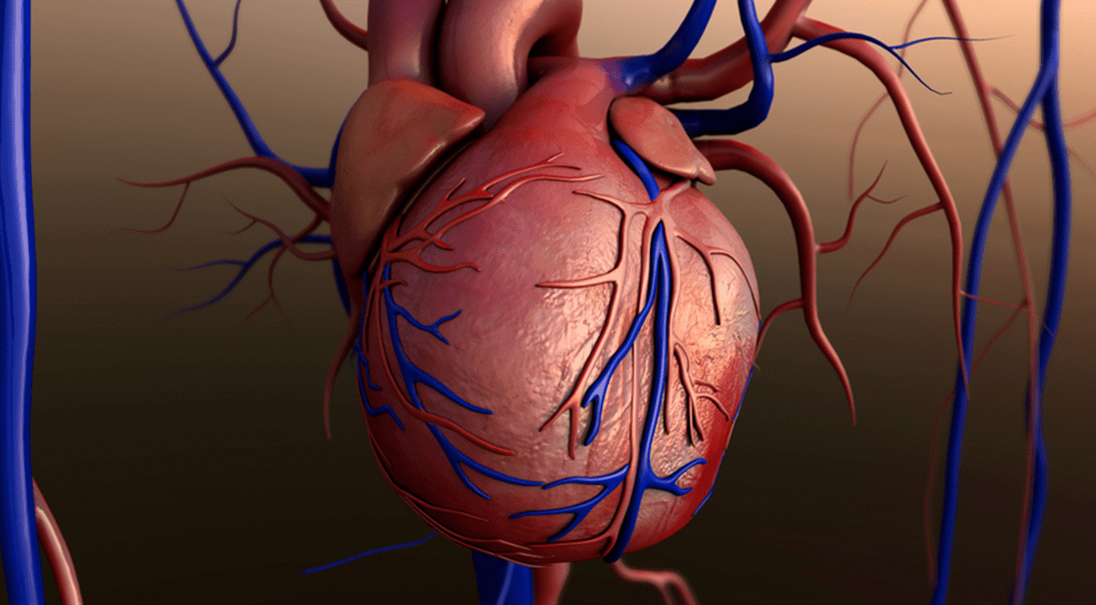 FDA Approves Cardiac Contractility Device for Select HF Patients
