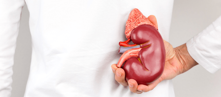 Mistaking a Kidney for a tumor