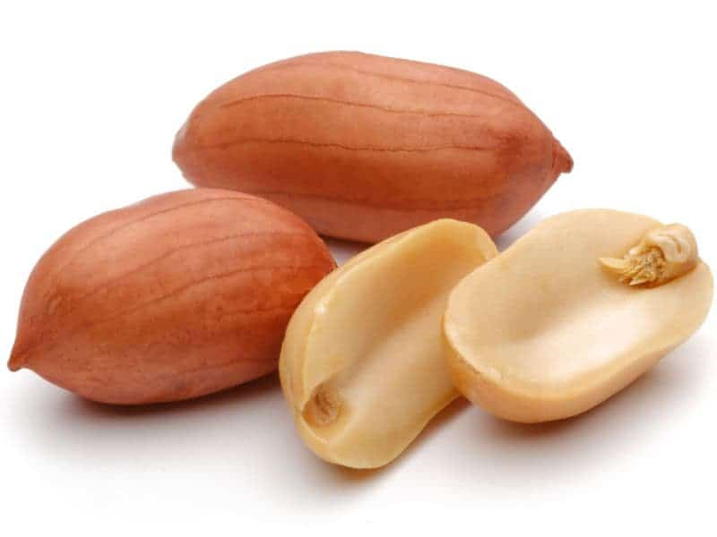 Many With Peanut Allergies Unnecessarily Avoid Tree Nuts