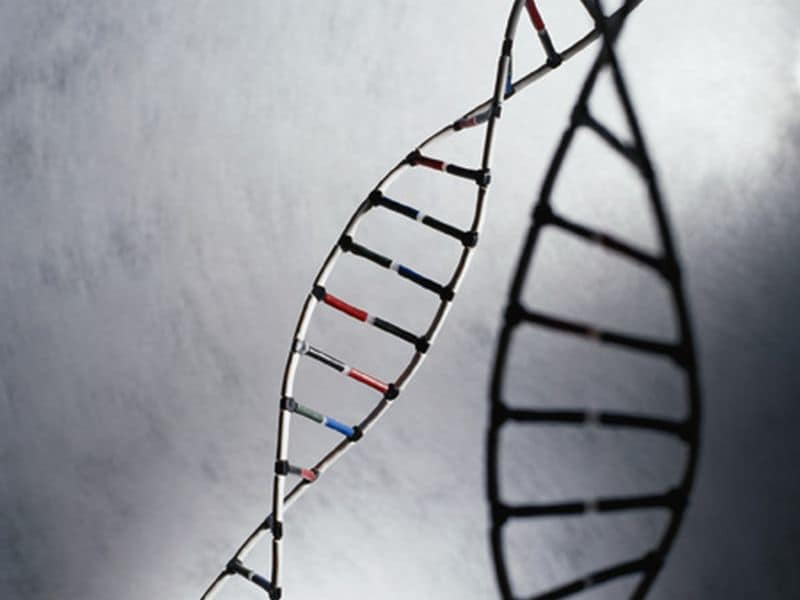 Fragmentation Profiles of Cell-Free DNA Can Detect Cancer