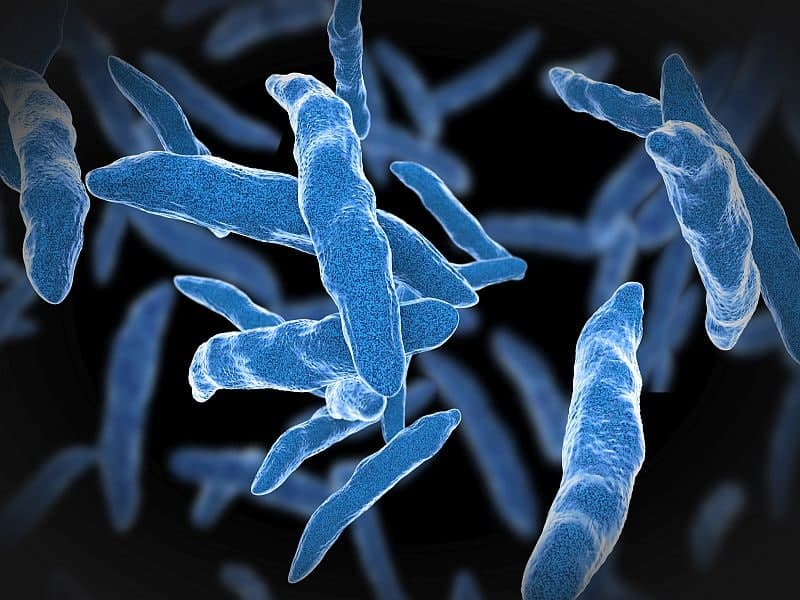 Tuberculosis Rates for U.S. Children Are Low and Declining