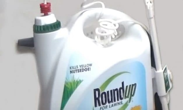 Man's Award in Roundup Cancer Case Slashed by Judge