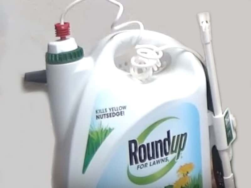 EPA Will Not Approve Warning Labels for Glyphosate
