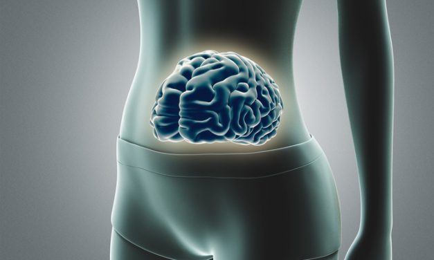 """Researcher Makes Case for """"Brain-Belly"""" Link"""