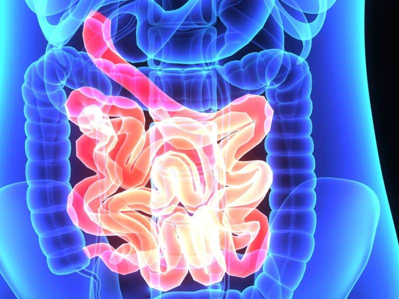 Antibiotic Exposure Linked to Risk for Inflammatory Bowel Disease