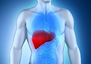 Risk Factors for Drug-Induced Liver Injury ID'd in Hospitalized Patients
