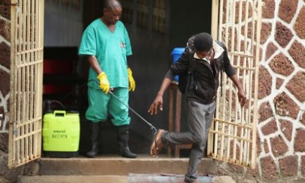 WHO says Ebola preparedness much better now than in 2014