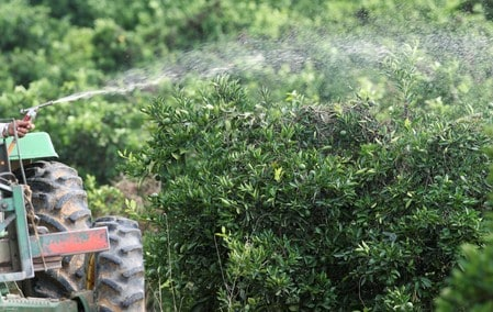 Ban on glyphosate would be 'disaster' for Brazil agriculture: minister