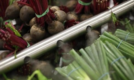 Beet juice may reduce walking pain with leg artery disease