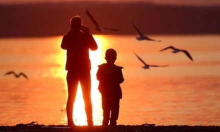 New autism guidelines focus on early diagnosis, treatment