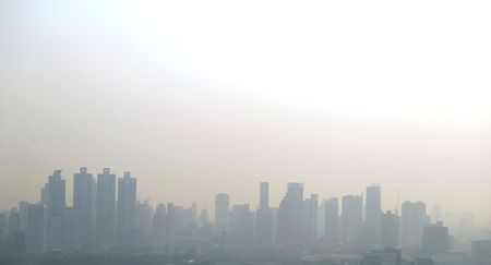 Low levels of environmental pollutants may slow fetal growth