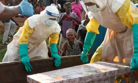 Ebola spreads to high-risk area of Congo: WHO
