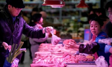 Pigs fly: China pork producers surge as swine disease cuts supply