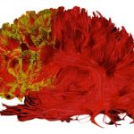 Procrastinating genius: did da Vinci have attention disorder?