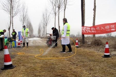 China confirms new African swine fever outbreak in Guangxi