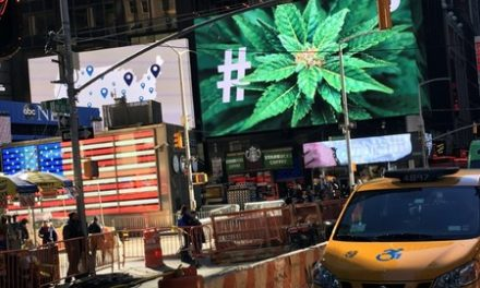 New York state decriminalizes pot, stops short of Cuomo's legalization call