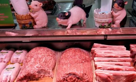 China's Guangdong to release another 3,150 tonnes of pork from reserves to secure supplies