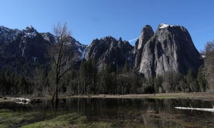 Yosemite National Park says 170 people ill in possible norovirus outbreak