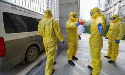 Data suggests virus infections under-reported, exaggerating fatality rate