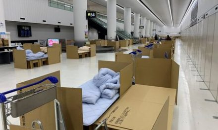 Japan's Narita Airport offers cardboard beds for travellers awaiting coronavirus all-clear