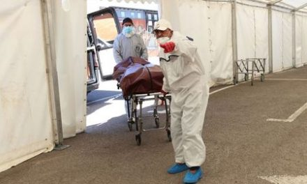 UK coronavirus deaths in hospitals rise by 828 to 17,337
